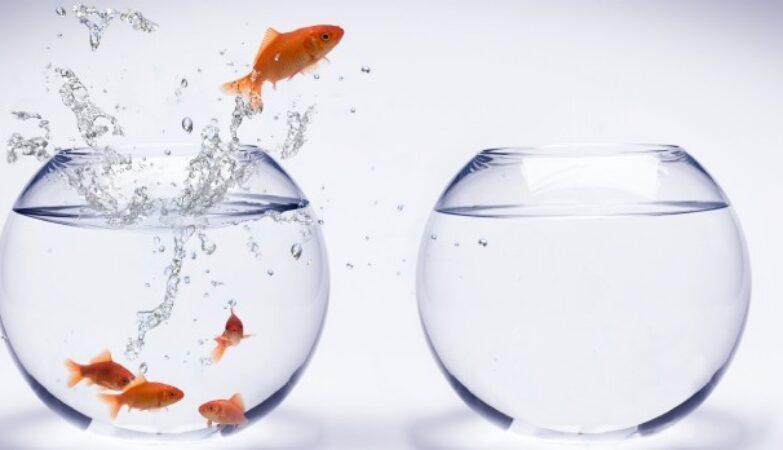 Revue-presse-directeurs-administratifs-financiers-semaine-juillet-2020--LE